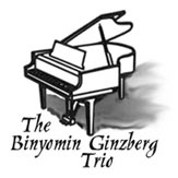 The Binyomin Ginzberg Trio logo